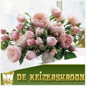 BLOEMISTERIJ DE KEIZERSKROON logo