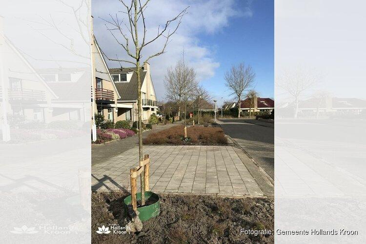 Aanplant nieuwe bomen in Hollands Kroon