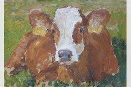 Koeienschilderen met de ezel in de wei