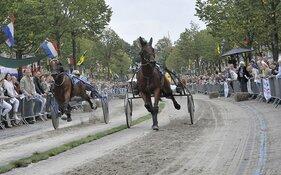 Fotowedstrijd: 'Prins Hendrik' gaat de lucht in op 15 september!