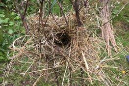 Natuurproefjes in het Streekbos