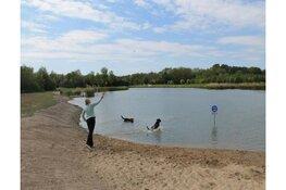 Hondenzwemplek Streekbos voorziet in behoefte