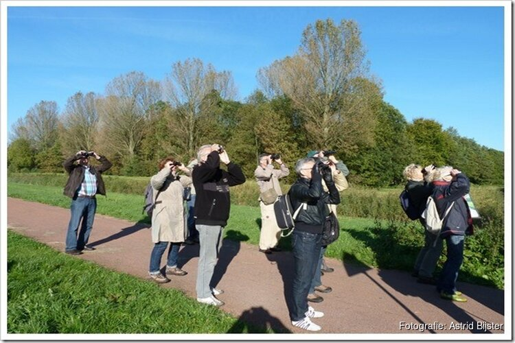 Activiteitenoverzicht IVN West-Friesland juli t/m september 2019