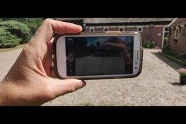 Fotowedstrijd en fotoworkshop in museumboerderij Hoogwoud