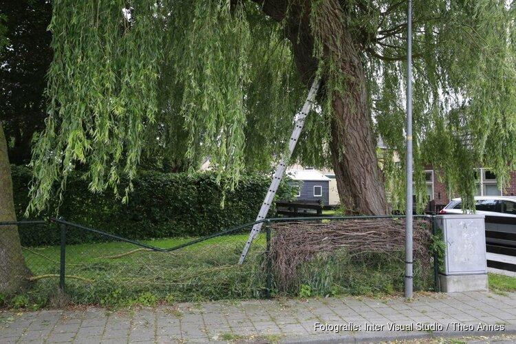 Man valt ruim 10 meter naar beneden tijdens snoeien van boom