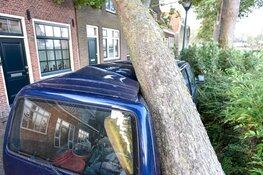 Boom valt op auto en huis