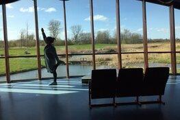 Zondag-yoga met uitzicht op het groen van natuurpark Blokweer, Blokker -met bamboeyoga