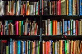 """Minister opent nieuwe bibliotheek in Wognum: """"Dit helpt een dorp levendig te houden"""""""