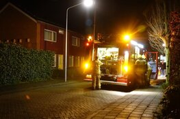Oplettende buurtbewoner blust brand coniferenhaag