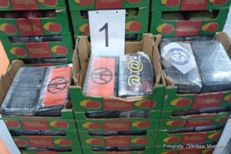 Bijna 1.200 kilo coke gevonden in lading mango's voor bedrijf in Zwaag