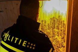 Hennepplantage opgerold op het bedrijventerrein De Veken